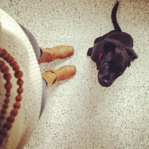 Wood bead necklace with leather boots (and an inquisitive pup)